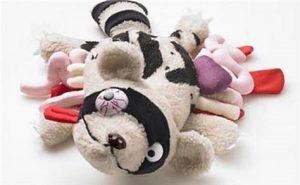Toad Skills Parenting Class | E-Bulletin